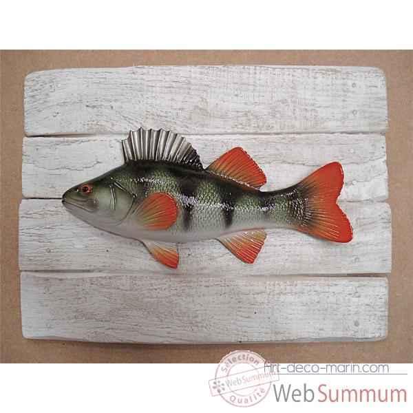 sur art d co marin cadre poisson d 39 eau douce cap vert scalaire cadr20. Black Bedroom Furniture Sets. Home Design Ideas