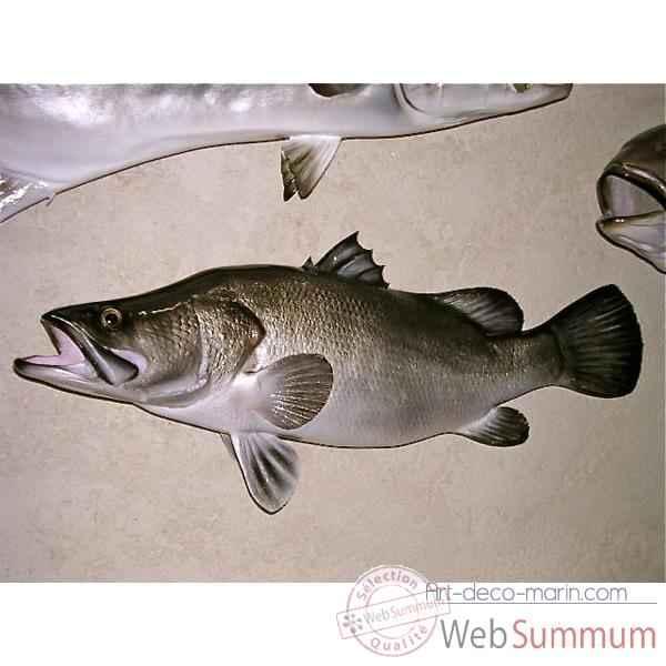 Troph e poisson d 39 eau douce tropicale perche du nil for Poisson tropicaux eau douce
